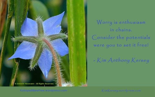 WORRY & POTENTIAL - a collaboration with @kakersey0537 | #KBFPhotography #KKQuotes