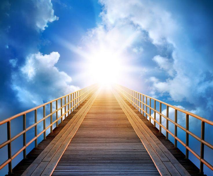 7 Golongan yang Mendapat Naungan Allah Pada Hari Kiamat Nan Kekal