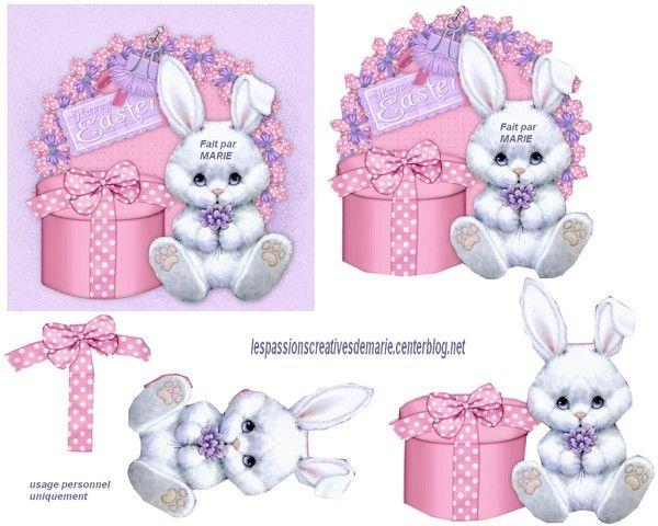Lapin blanc/boîte rose