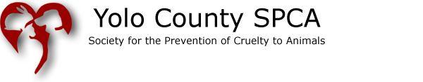 Yolo County SPCA  http://www.yolospca.org/