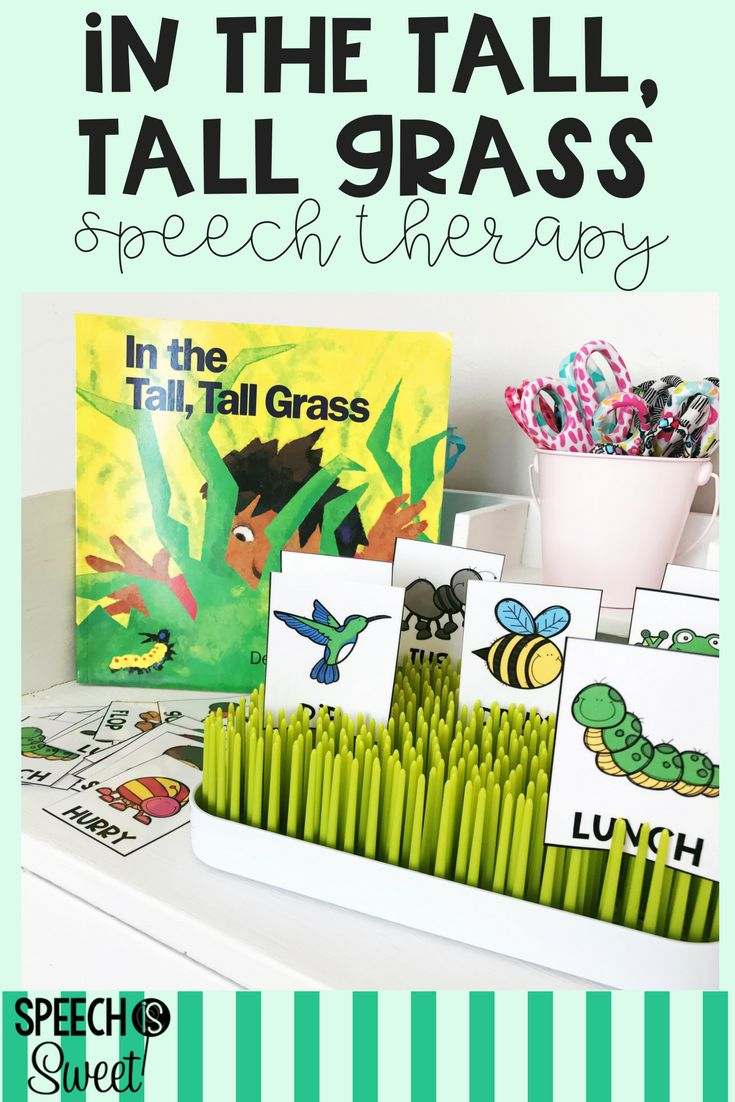Freebie for In the Tall, Tall Grass! This blog post features tons of ways that you can use this book in speech-language therapy! It can be used for rhyming, describing, comparing, and much more! The freebie is a rhyming match game and the cards can even be used to retell the story! Great for a bug theme or spring and summer speech therapy! #speechtherapy