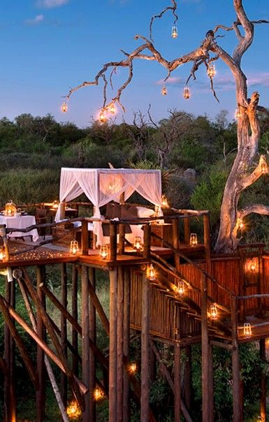 Lion Sands Game Reserve, South Africa (Under the stars tree house) ♥