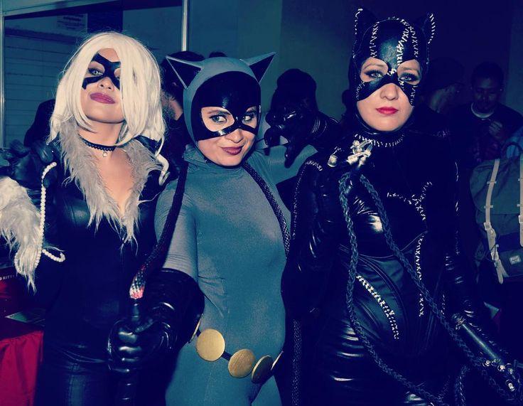 Gatitas en la TNT!! #blackcat #gatubela #batman #spiderman #marvel #dccomics #dccosplay #marvelcosplay #tnt32 #miaw
