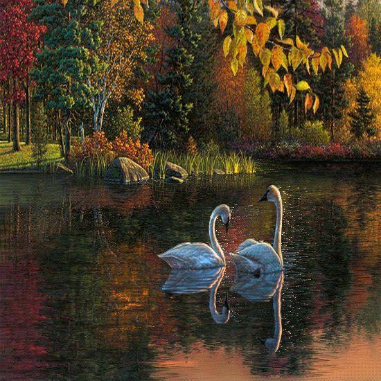 Výsledok vyhľadávania obrázkov pre dopyt jesenná priroda png gif