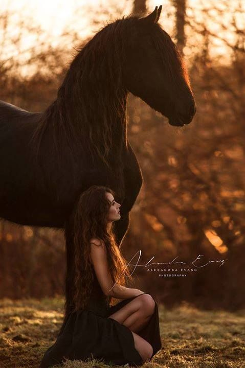 If I buy a Friesian, someday, I want a picture like this taken!