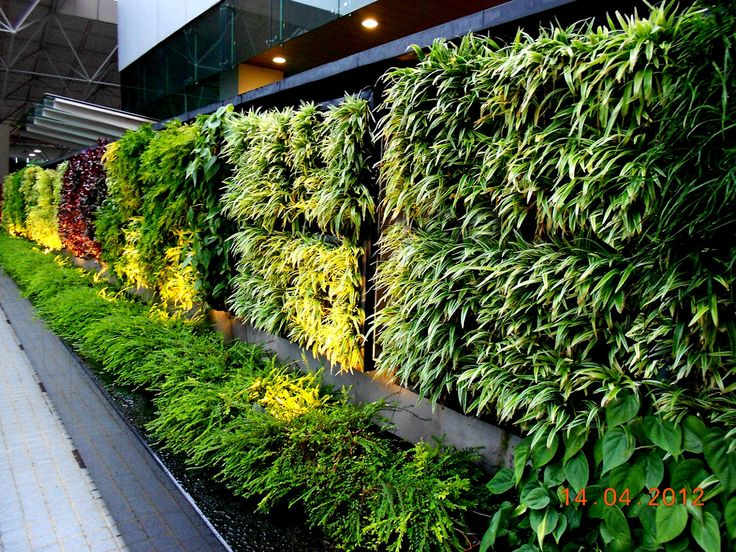 Vertical Gardening Systems Vertical Garden Concept for Buildings