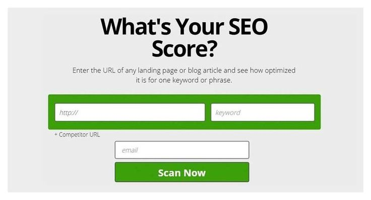 Free Online SEO Audit tool NZ