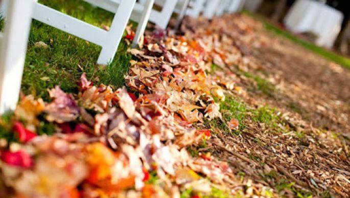 Idee originali per chi ha in programma di sposarsi in #autunno e sogna un #matrimonio indimenticabile.