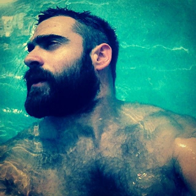 Hairy Bear. Men. Beards.