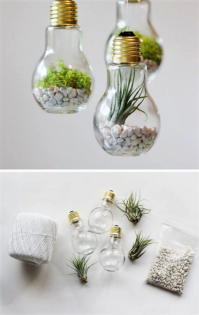 Why to throw out your old fused light bulbs. You can turn them into awesome terrariums and for sure, your friends will envy. Empty the bulbs, Put all that electric stuff and insert pebbles and plant of your choice. Hang it anywhere and enjoy.
