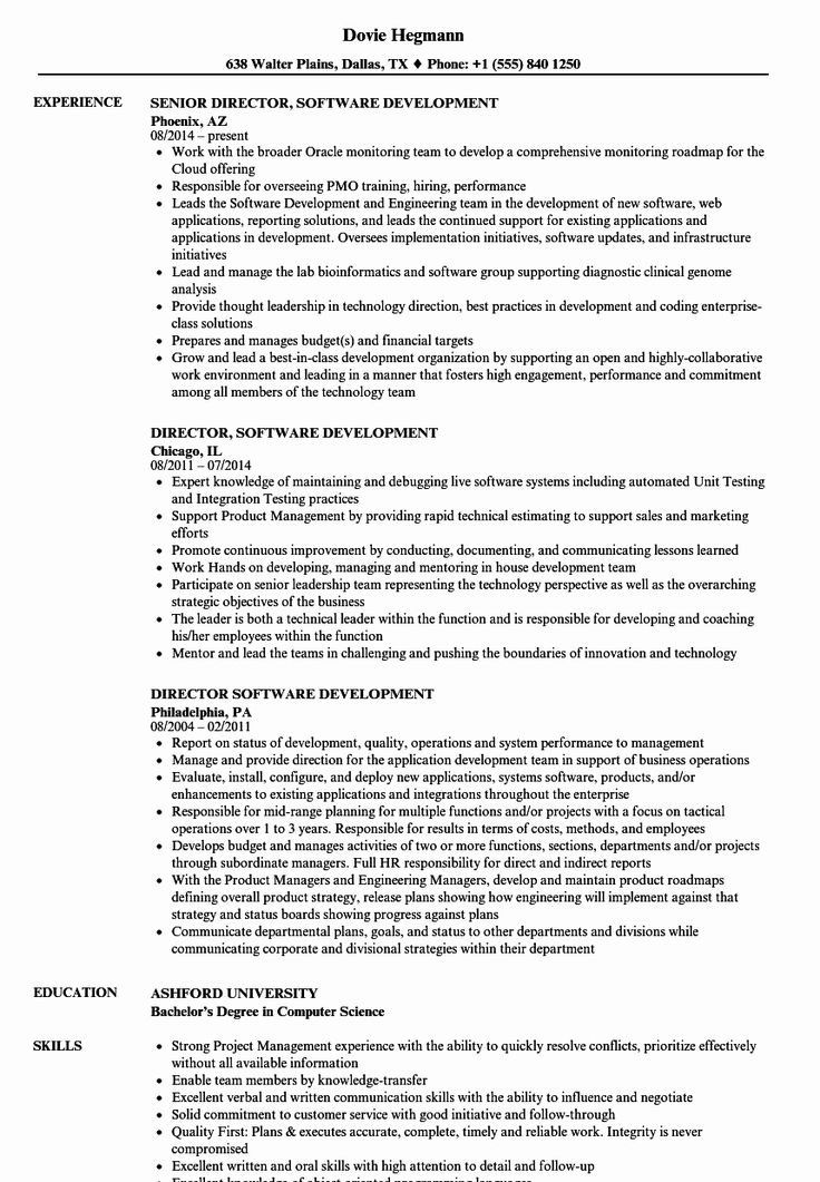 Director Of software Engineering Resume Beautiful Director