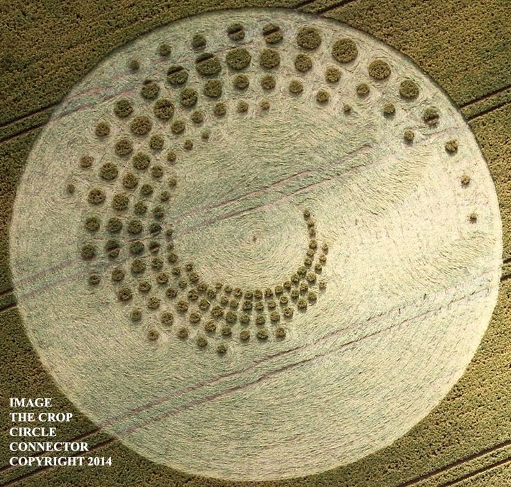Crop Circle at Forest Hill, nr Marlborough, Wiltshire. United Kingdom. Reported 16th July 2014