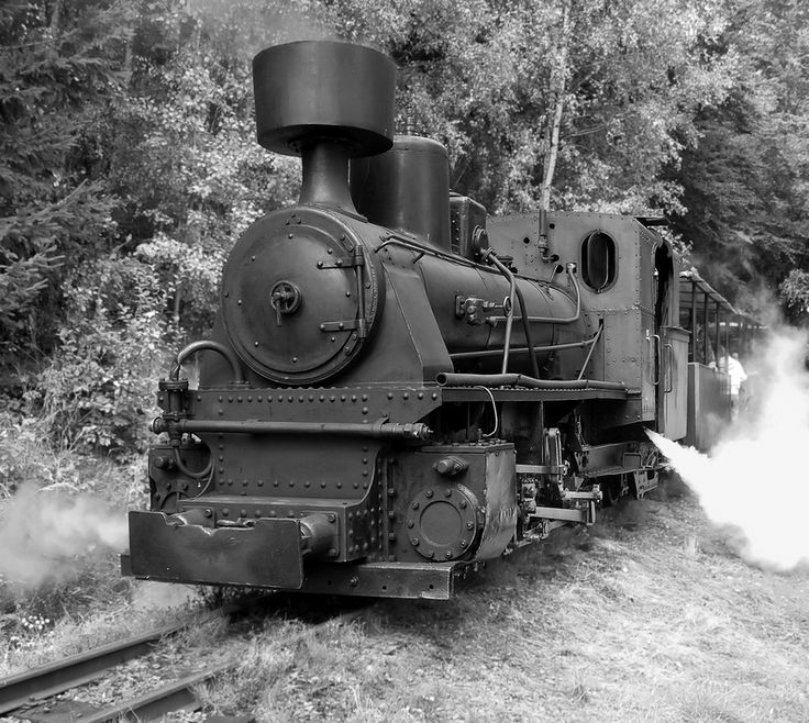 600 mm Austrian Krauss-Linz 1518 steam locomotive stands at the Veksl railway stop. Both locomotive and railway line belong to the Museum of Industrial Railways in Mladějov.