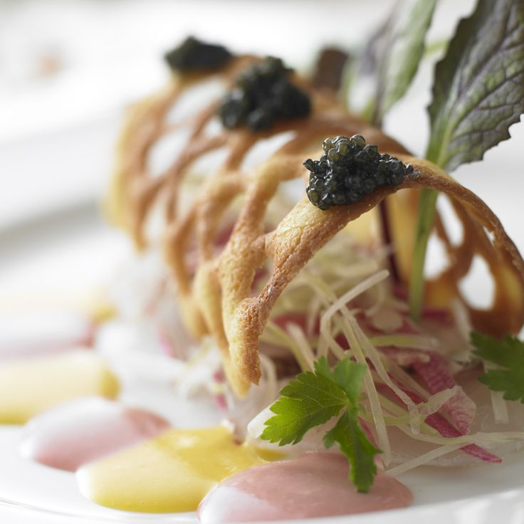 The appetizer of French cuisine ♯french