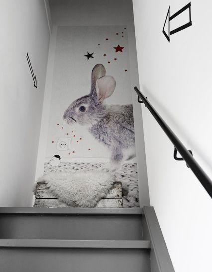 Behang / wandpaneel grijs konijn uit de collectie Stars van Onszelf #behang…