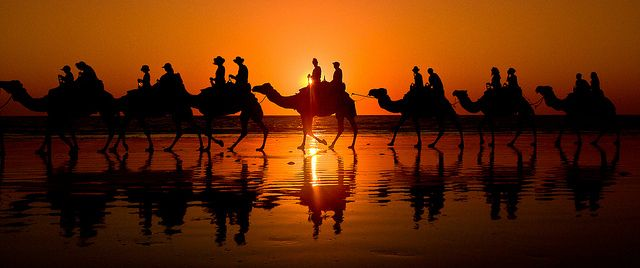 Such an iconic image of Western Australia, camels on the beach at Sunset in Broome