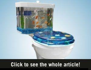 Nice aquariums