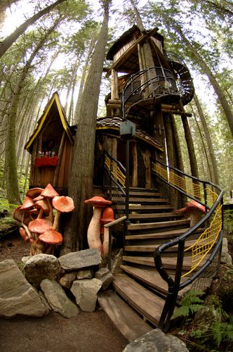 Enchanted Forest, Revelstoke, BC! Best place to visit!