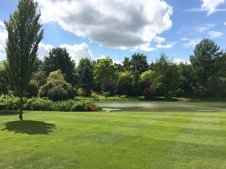 #chippenhampark #lake #summersday #scenery