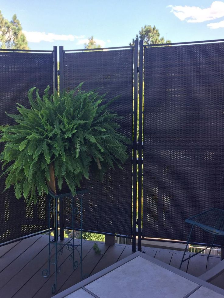 Best 25 patio privacy ideas on pinterest backyard for Apartment balcony privacy solutions