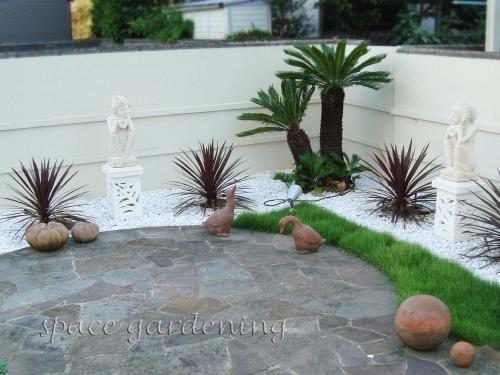植栽 庭木 常緑樹 ソテツ ドラセナ