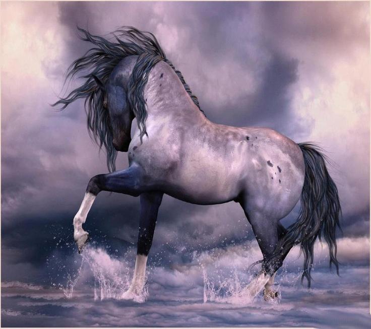 Stallion, beauty, horse, hest, water, splash, clouds, strong, wild, mustang, animal, beautiful, art