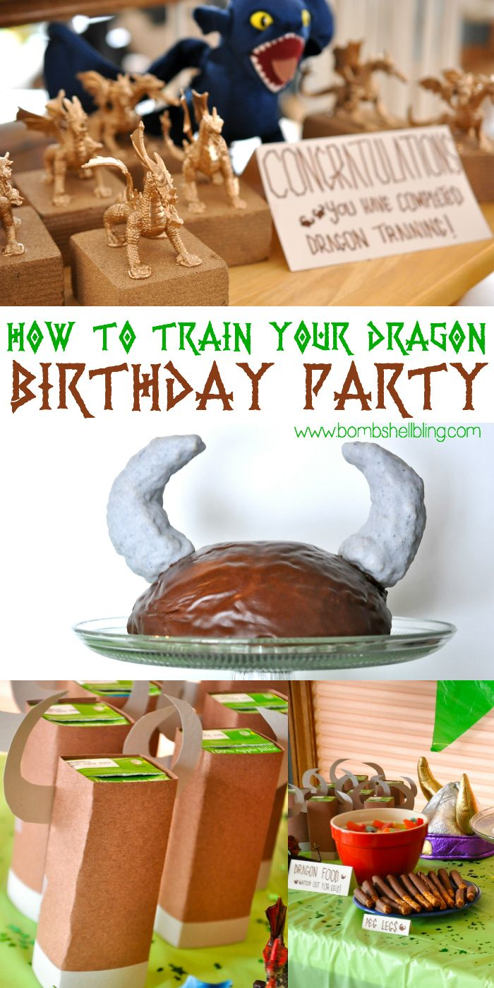 Cutest How to Train Your Dragon birthday party EVER!