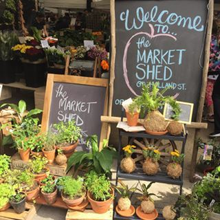 The Market Shed on Holland   28 Amazing Markets In South Australia To Visit This Spring