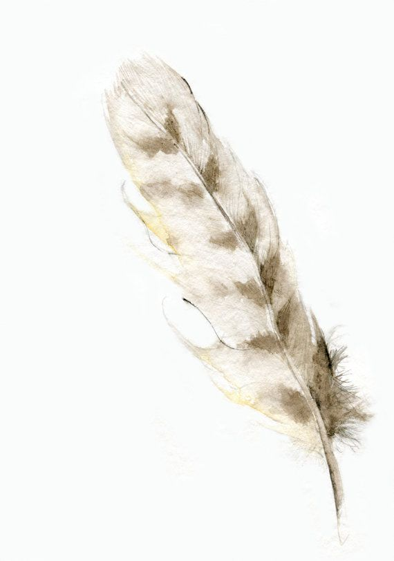 Owl Feather ever falling feather on me has a meaning this one is an owl