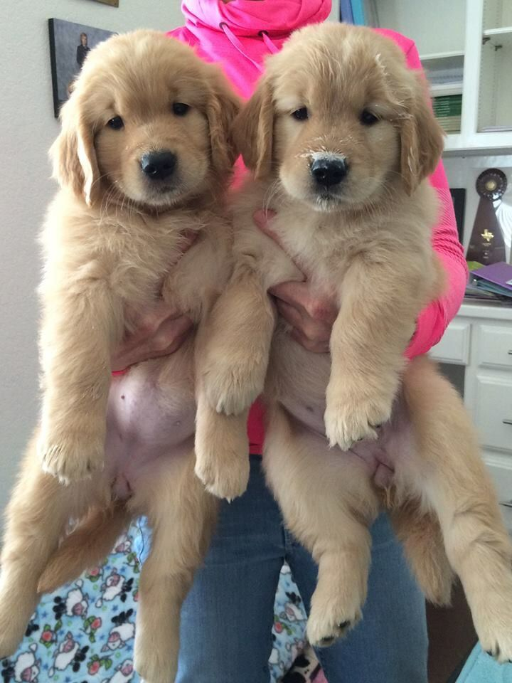 Double the love!