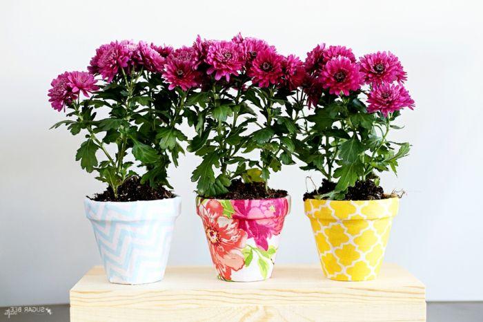 die 25 besten ideen zu lila rosen auf pinterest rosen. Black Bedroom Furniture Sets. Home Design Ideas
