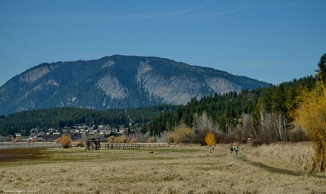This is part of the SABNES trail between Raven subdivision (centre) and downtown Salmon Arm in the autumn.   CN Rail line visible on the right. The tracks curl around the bay.  Bastion Mountain is straight ahead.