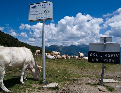 Col du Tourmalet and both sides of Col d'Aspin