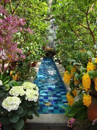 United States Botanic Garden, Washington DC. A truly green spectacle, with a jungle, a National Garden with a First Ladies water garden, a rose garden and exhibits on ecology and evolutionary biology