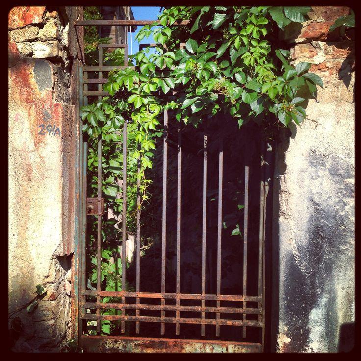 Kapıların ruhu sarmaşıklar...