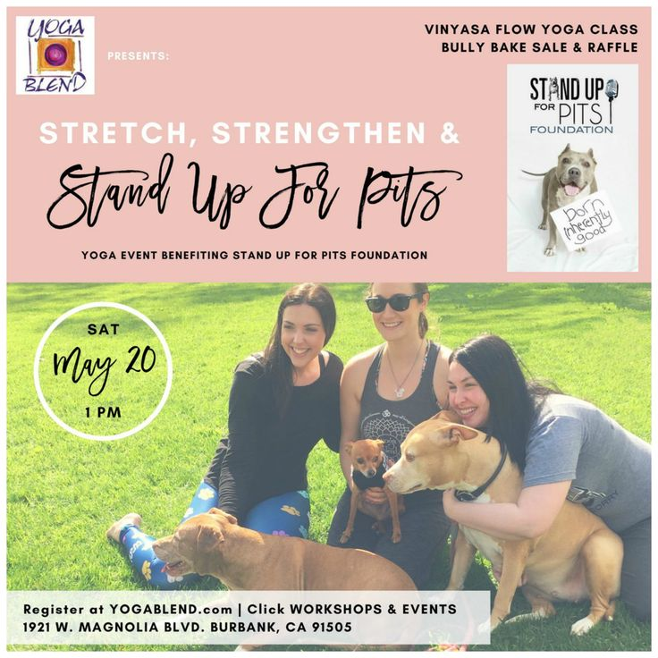 Inhale, Exhale, and Help Save Precious Pit Bulls! | Positively Woof | Sisters Brijana and Kelsey Prooker are hosting a charity yoga event to benefit the Stand Up For Pits Foundation, taught by Marcy Johnson at Yoga Blend in Burbank, CA