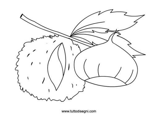 castagna-con-riccio-da-colorare