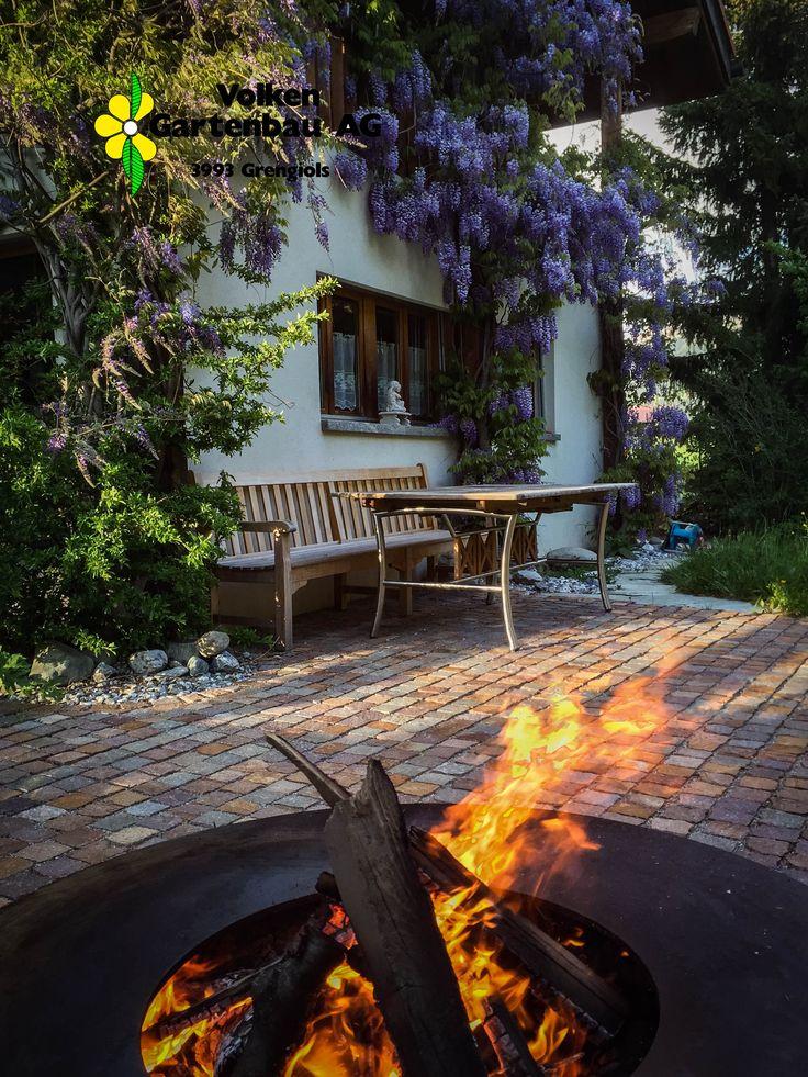 Wisteria sinensis, Feuerring, Sitzplatz mit Natursteinpflästerung