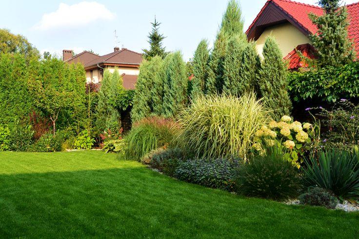 Ogród z hortensjami.