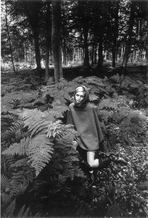 Twiggy. Photographed by Jeanloup Sieff.