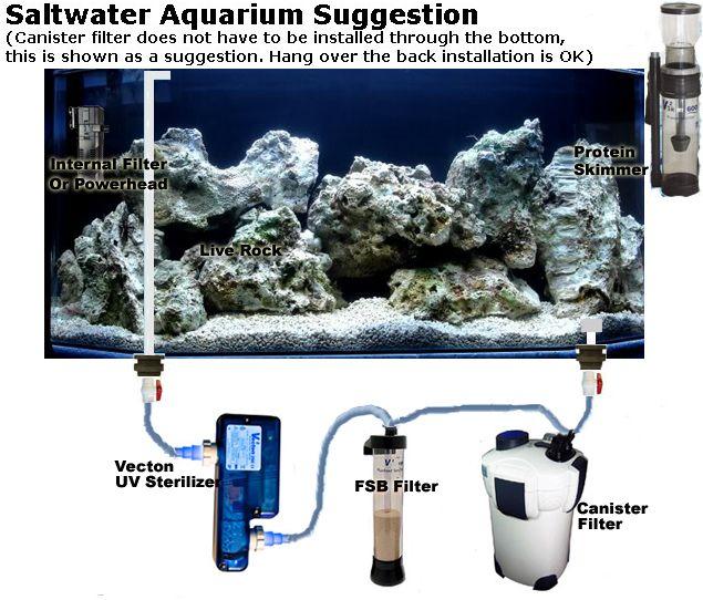 55 best d i y how to aquarium pond images on for Best pond filter setup