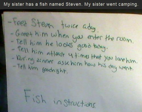My sister has a fish named Steven. My sister went camping. Her instructions:: Giggle, Leave, Awesome, Funny Stuff, Humor, Funnies, Kids, Fish Instructions, Laughter