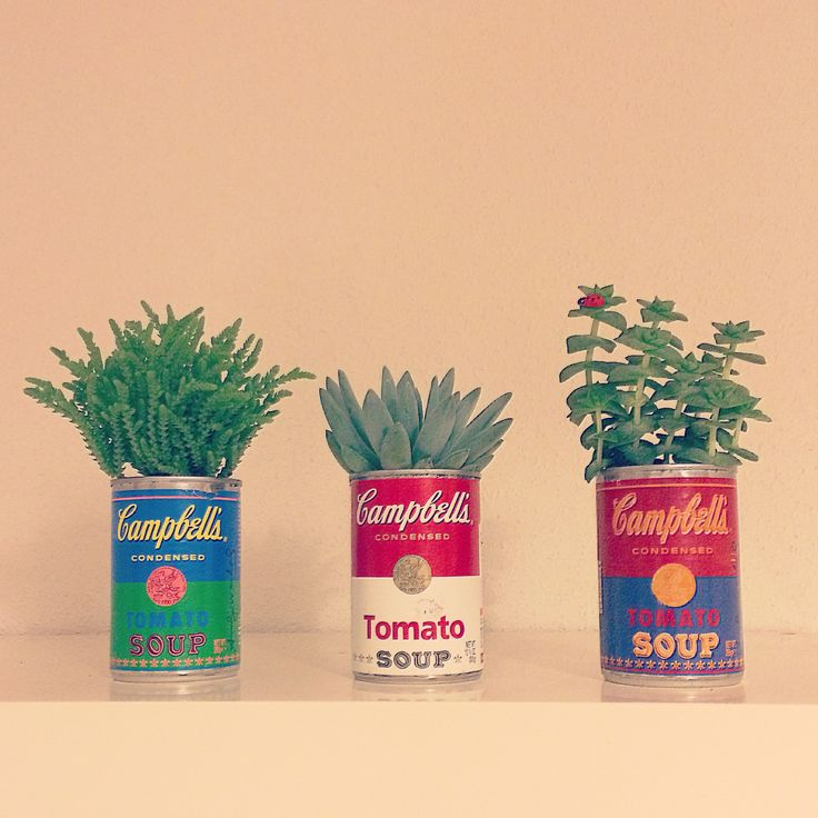 DIY: plantitas en latas Campbell's