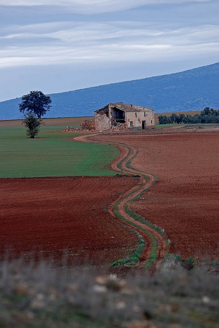 Rode aarde nabij Fuente de Piedra in Andalusië