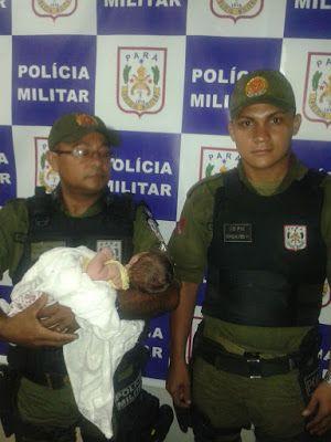 POLÍCIA DO PARÁ                                 Ao Alcance de Todos!: POLICIAIS MILITARES ENCONTRAM BEBÊ RECÉM-NASCIDO A...