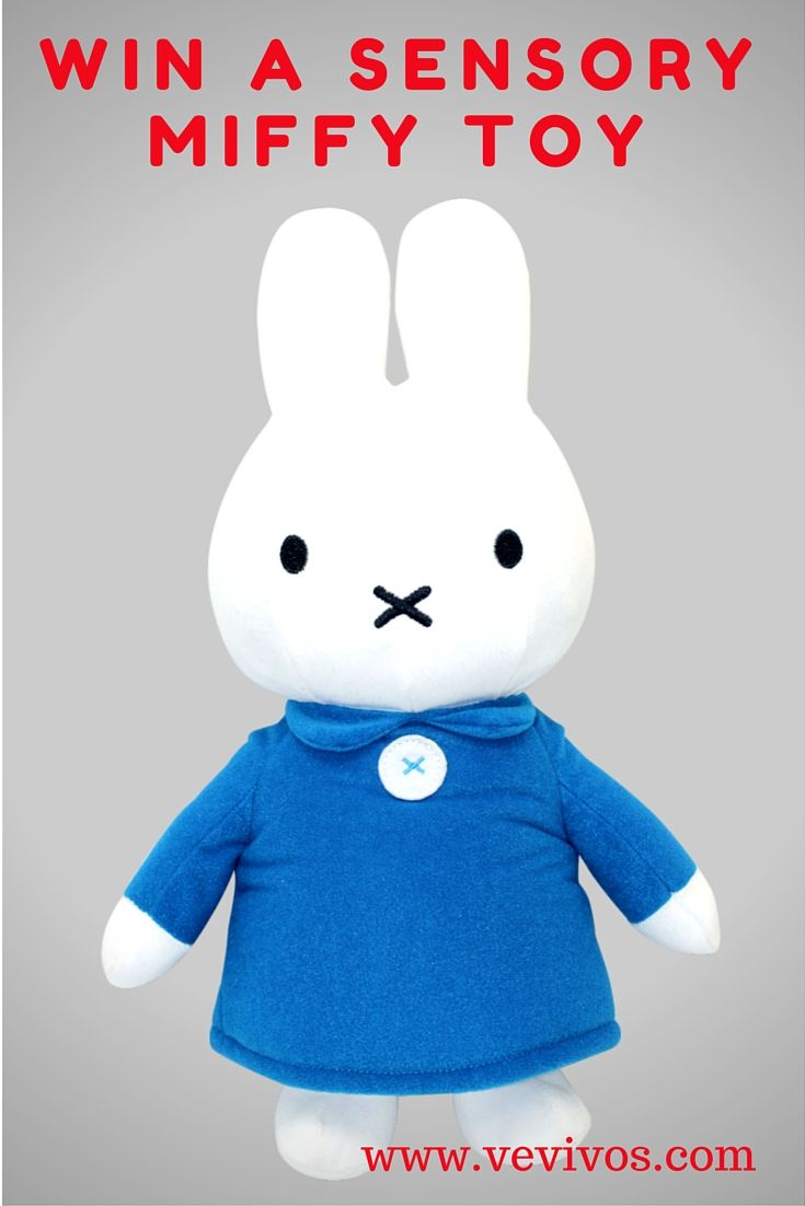 Enter this giveaway to win a great Sensory Miffy toy with www.vevivos.com