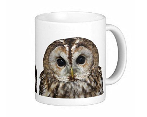 モリフクロウとミミズクのマグカップ:フォトマグ 熱帯スタジオ http://www.amazon.co.jp/dp/B0121VCHW4/ref=cm_sw_r_pi_dp_az6Rvb0K2DD7M