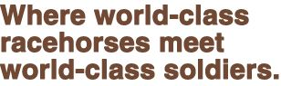 World-Class Horses, World-Class Soldiers