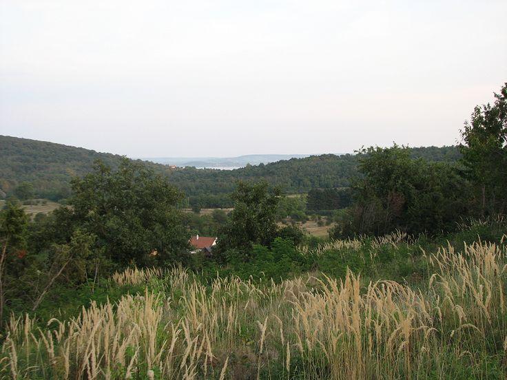 Csarabos Tanösvény (Salföld) http://www.turabazis.hu/latnivalok_ismerteto_2309 #latnivalo #salfold #turabazis #hungary #magyarorszag #travel #tura #turista #kirandulas