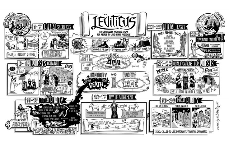 The Bible Project: The Book of Leviticus Poster